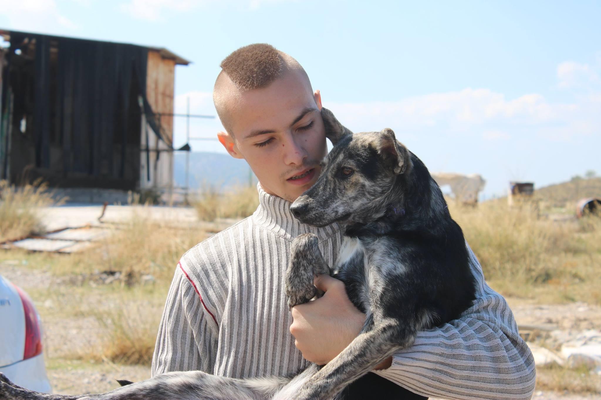 Αποτέλεσμα εικόνας για Greek Animal Rescue / Μενέλαος Καραμαγγιώλης